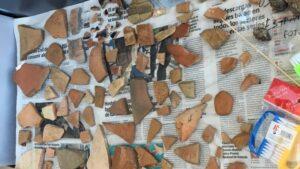 Trozos de vasijas, ánforas y restos de un caballo aparecieron en Baria