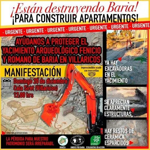 Cartel Baria Villaricos Manifestación 20 de diciembre de 2020